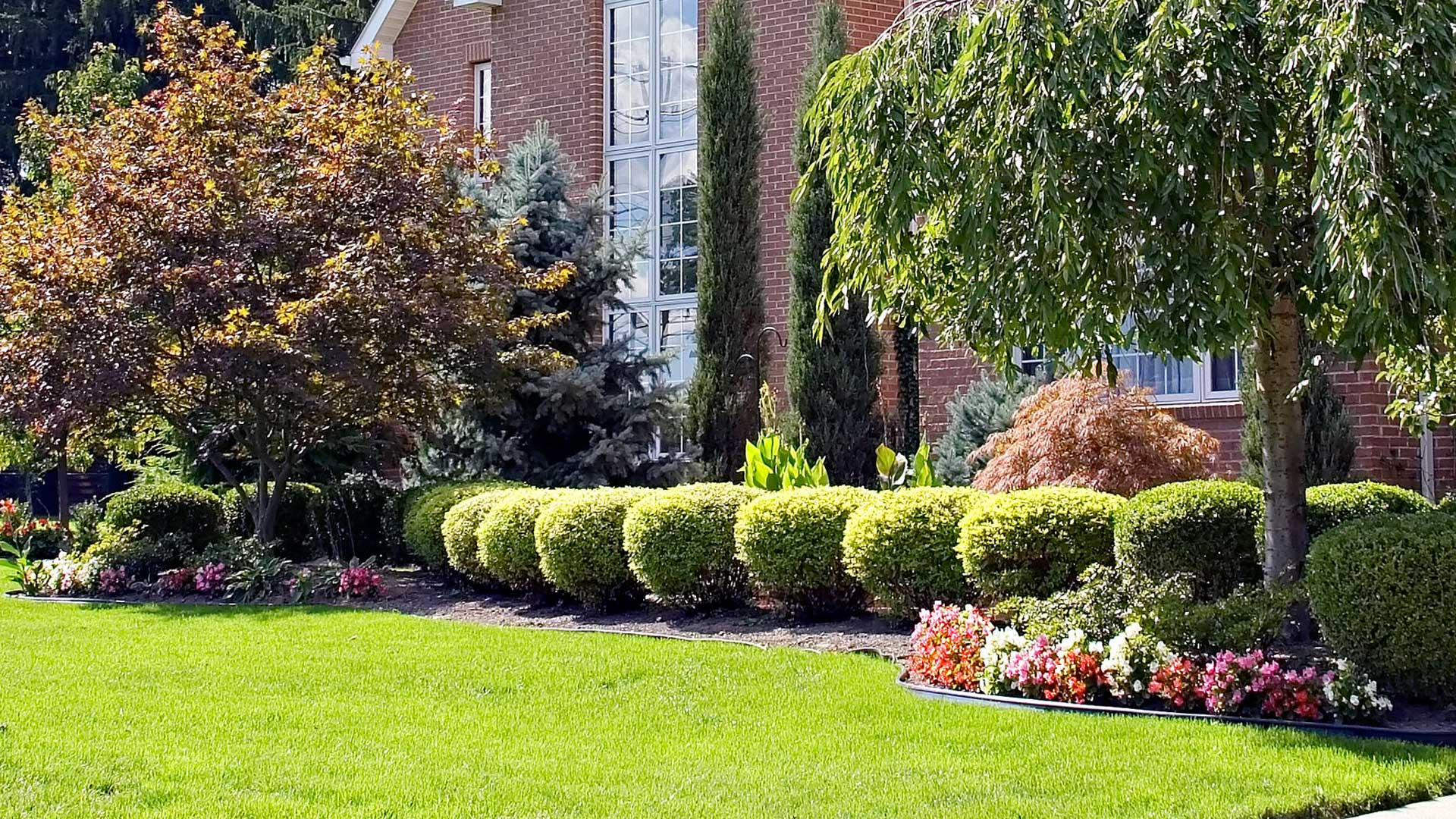 Landscaping with healthy plants that are properly cared for in Chatham, NJ.