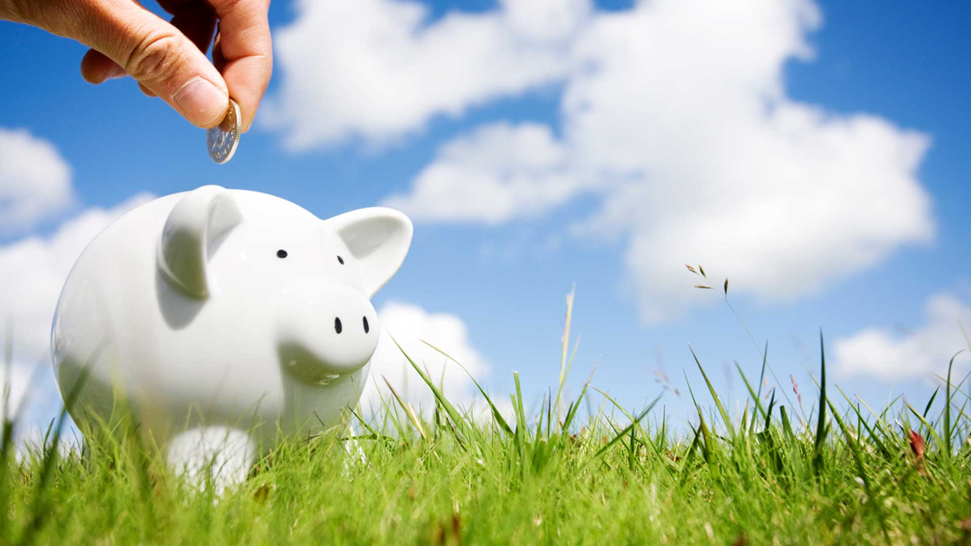 Saving money on lawn care services in Berkeley Heights, NJ.