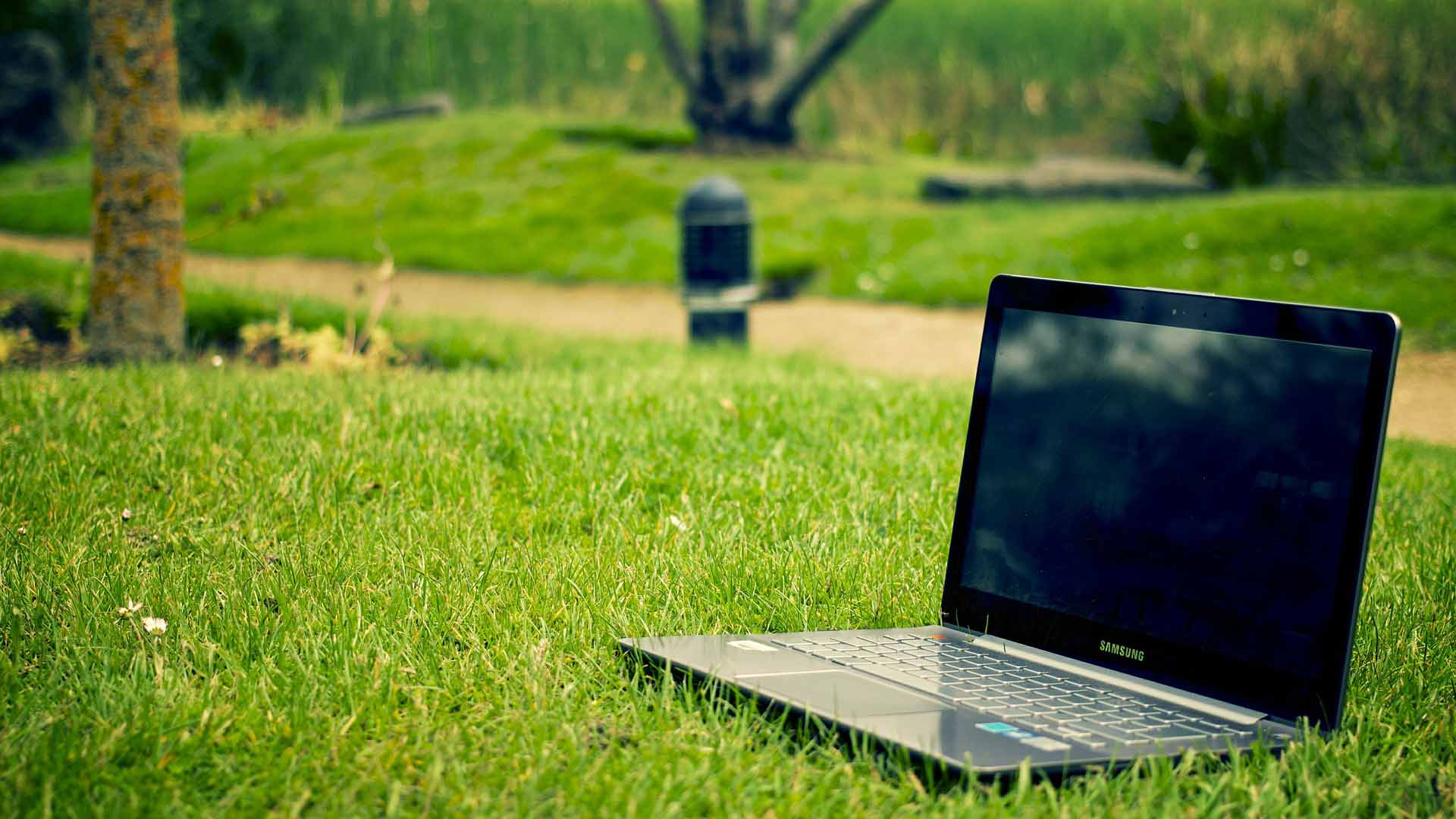 Computer sitting in green lawn for blogging.