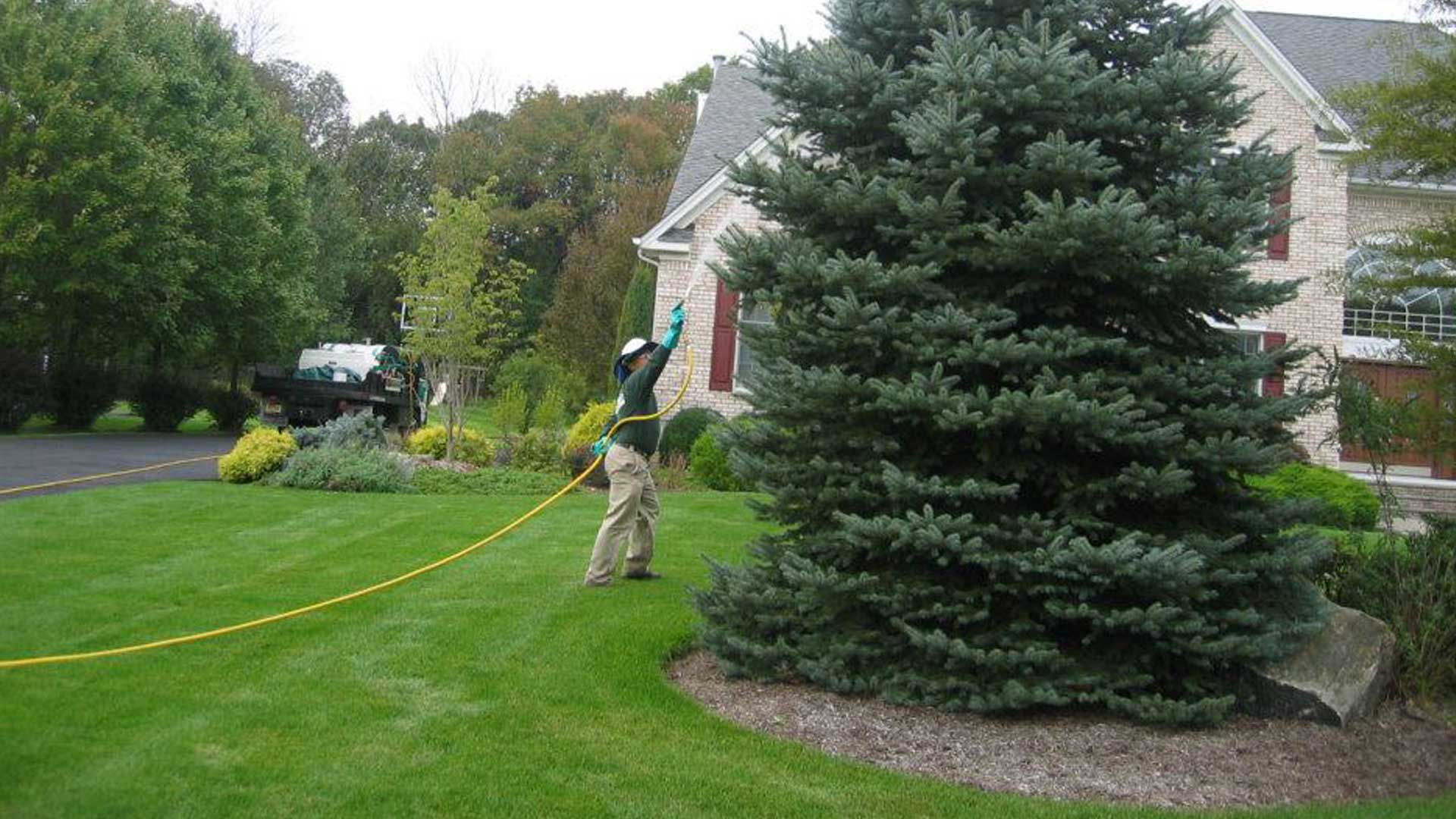 1.888.LawnTec employee treating the lawn and trees in Berkeley Heights, NJ.